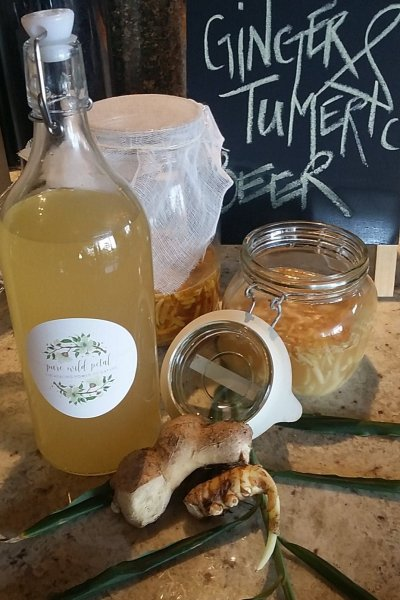 clinical nutrition ginger turmeric beer